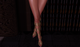 SOHOe SHOeS Champagne Knee Highs